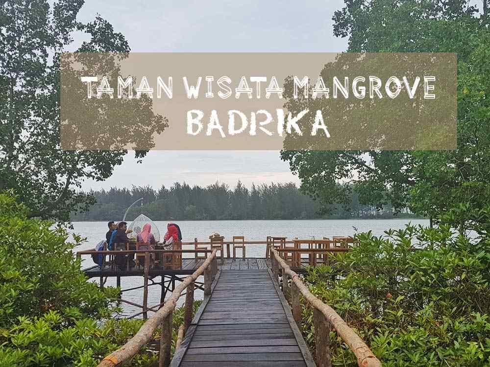 Ada Apa di Taman Wisata Mangrove Badrika?
