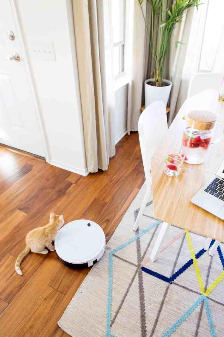 7 Reasons How bObi Robot Vacuum Changed My Life