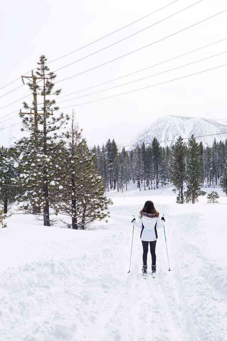 Cross-country skiing at Mammoth Lakes