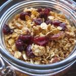 Pecan Cranberry Granola