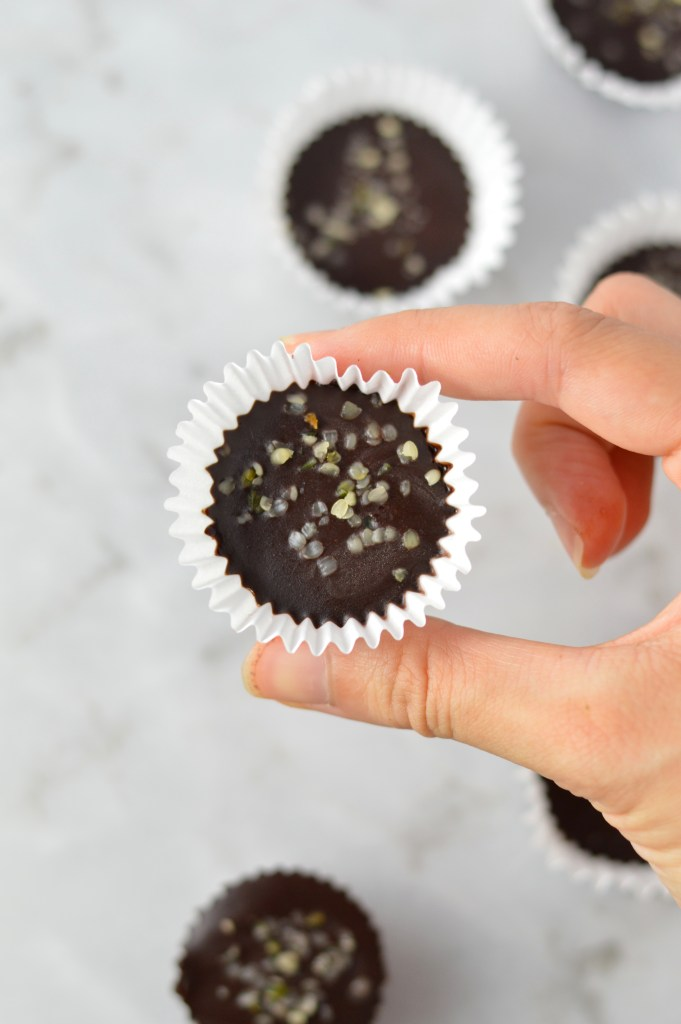 This Hemp Heart Fudge Bites recipe is so quick and easy to whip up. Made with only 4 ingredients, this is vegan and gluten free.