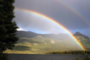 rainbow-436171_1920 (800x533)