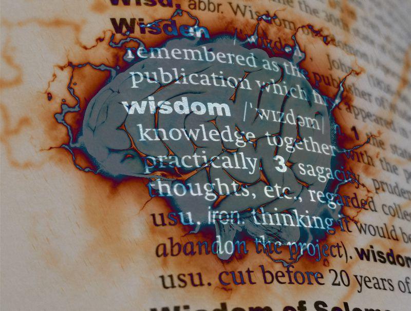 Fortune Cookie Friday: Gaining Wisdom