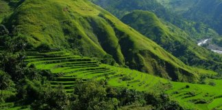 The Hidden Rice Terraces of Antique