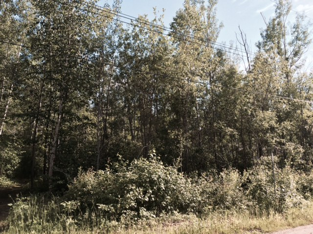 Sold Vacant Lot 26 Lakeview Dr Sandy Bay Victoria Beach