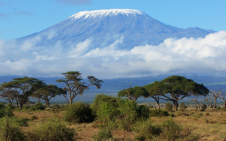 Mount Kilimanjaro - See it or Climb it on your Tanzania Luxury Safari