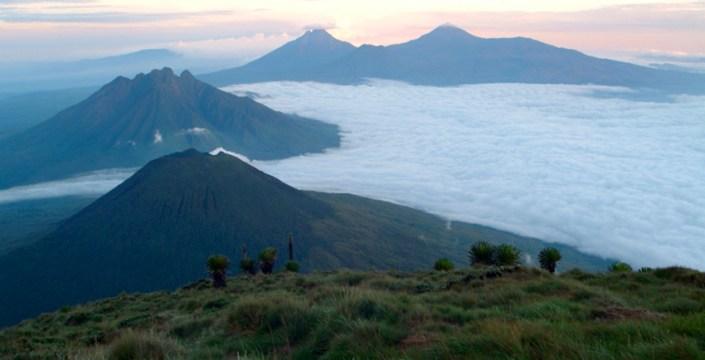 Rwanda Park National Des Volcanes