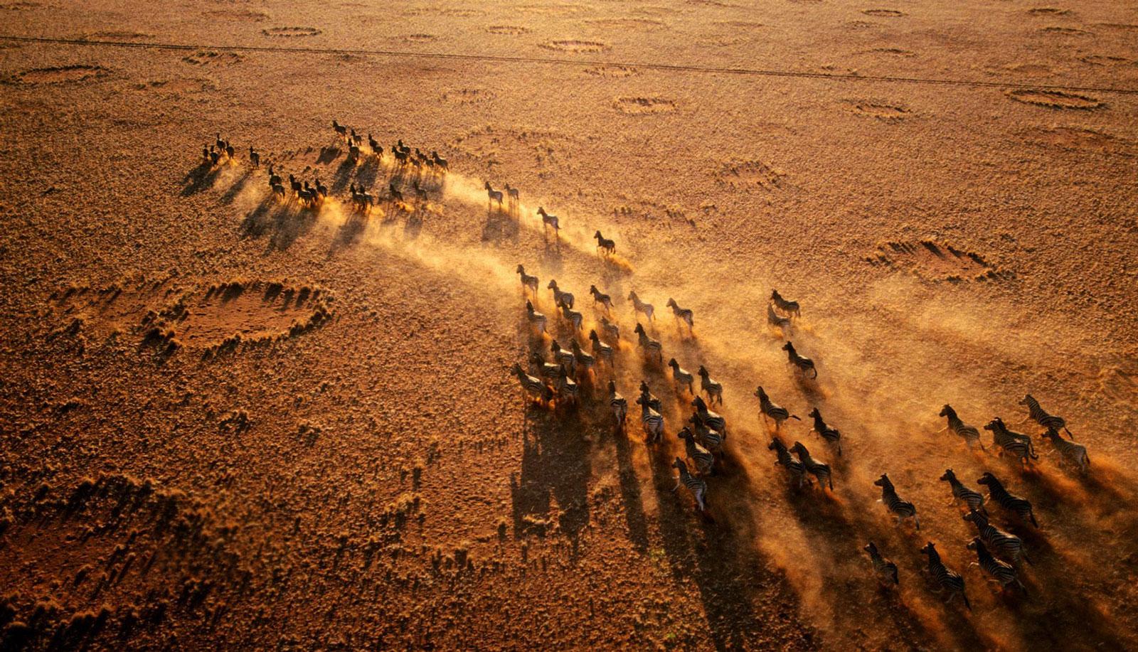 Fly-in Safari Namibia