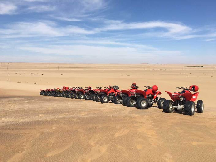 Incentive in the Namib Desert