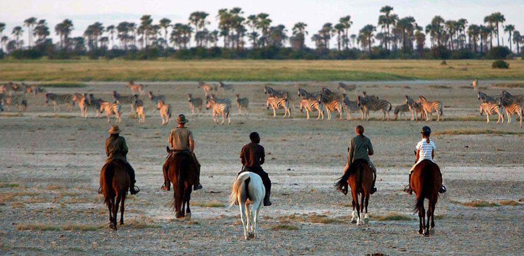 Botswana Safari - Jacks Camp