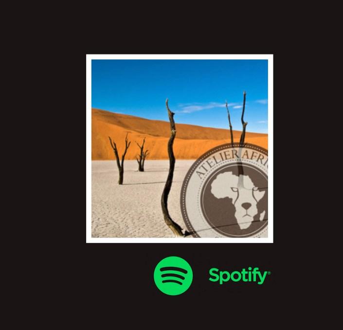 Spotify playlist African Music
