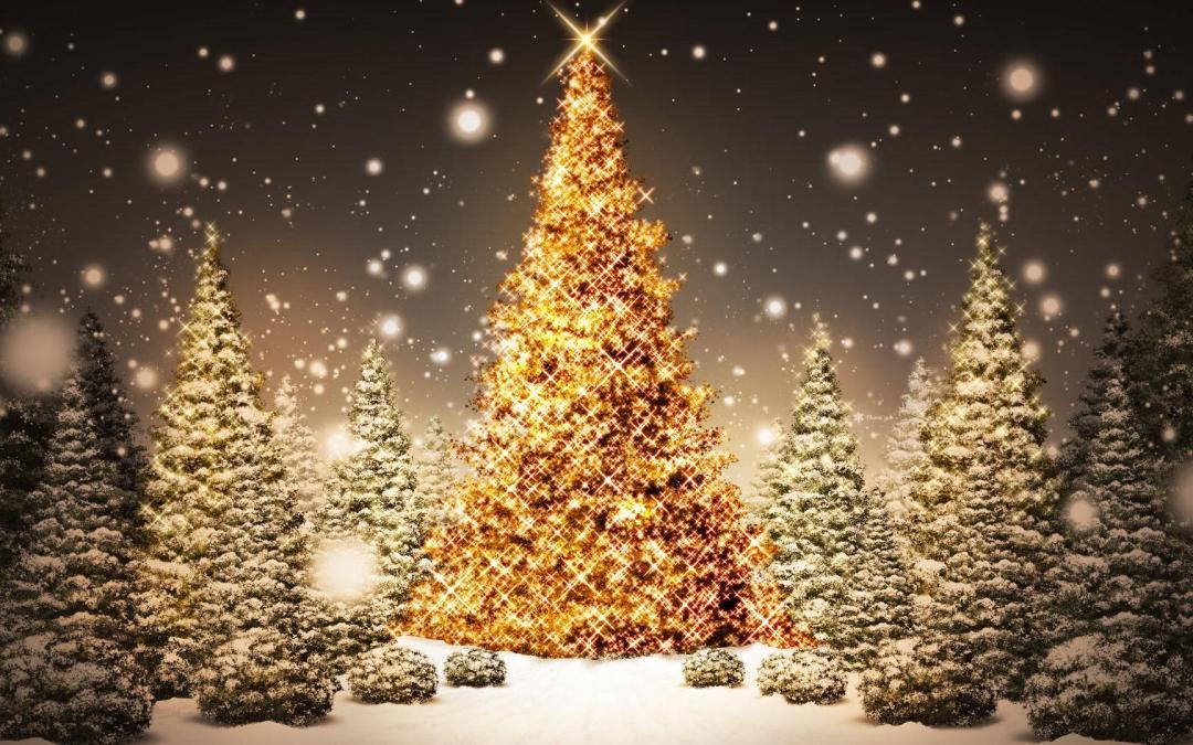Un Noël haute-couture chez Fanchon !