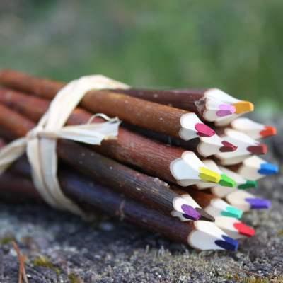 fagot 16 crayons de couleur en branche d'osier fabrication artisanale landaise