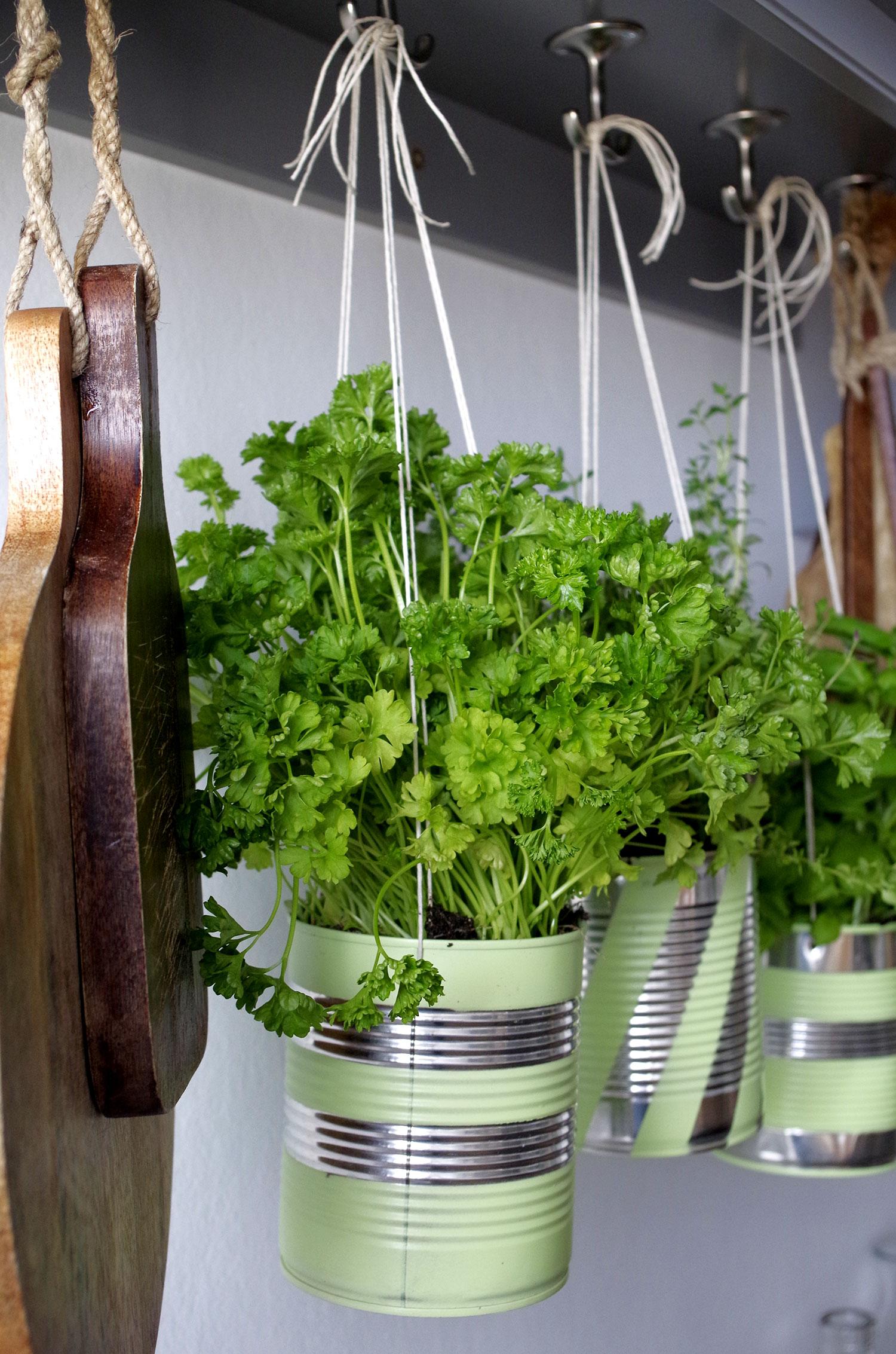 DIY | Je recycle mes boites à conserve en pot à herbes aromatiques