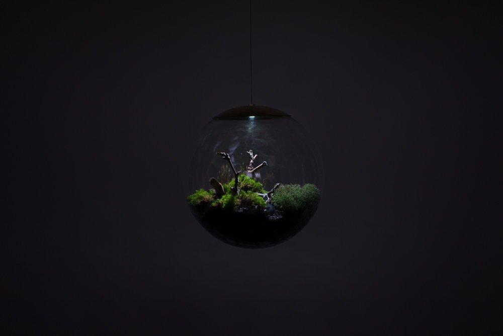 Decoración con lámparas terrarium