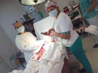 Enfermería 7