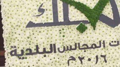 Photo of شبيب البوسعيدي يكتب: قراءة في تطوير المجالس البلدية