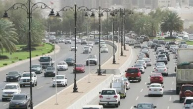 Photo of الأبيض له نصيب الأسد من ألوان السيارات بالسلطنة.. فما نصيب الألوان الأخرى؟