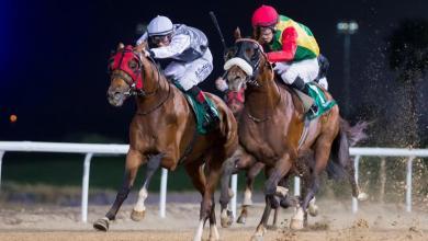 Photo of المهر زاهي يحقق المركز الأول في الإمارات