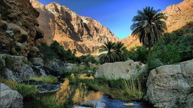 Photo of يعد أهم الوجهات السياحية: إقبال سياحي كبير على وادٍ بالشرقية