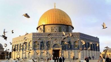 Photo of مسؤول يؤكد لسماحة الشيخ الخليلي: لن تقوم علاقة بين السلطنة وإسرائيل