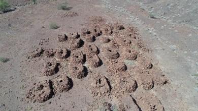 Photo of بالصور: اكتشاف مقبرة نادرة في السلطنة