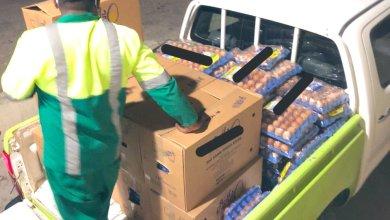 Photo of إتلاف بيض فاسد في مركز تجاري