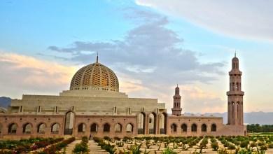 صورة وكيل الأوقاف يرد على سؤال حول موعد فتح المساجد