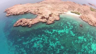 صورة من الغد: فتح محمية جزر الديمانيات الطبيعية، لكن بإجراءات