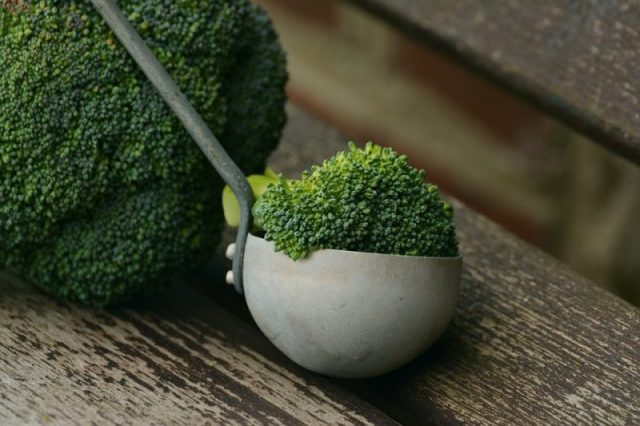Broccoli For Vitamin E Athelio Com