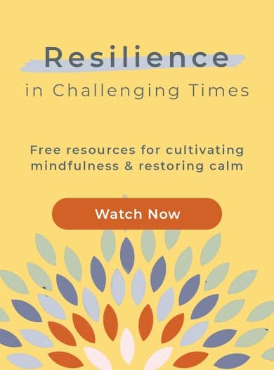 Resilience in Challenging Times Program