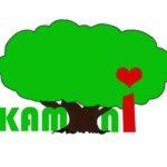 Logo kamini
