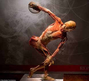 4B07EC6300000578-5602971-Dozens_of_bodies_used_in_a_gruesome_exhibit_may_have_come_from_C-a-57_1523457615114