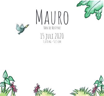 kaartje Mauro 2