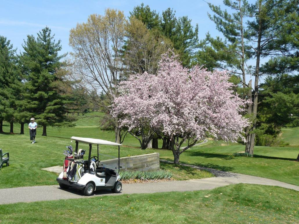 Golf Course - Athens Country Club on 2002 chrysler gem cart, car cart, box cart,