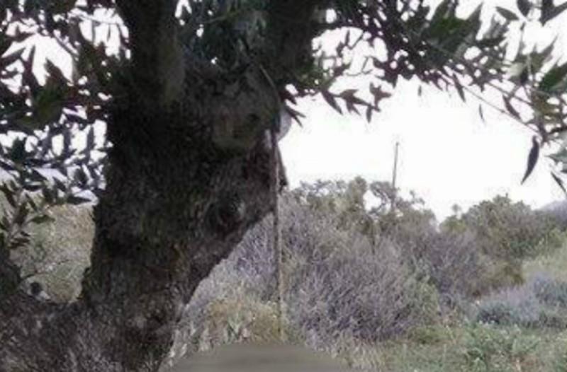 Ερέτρια: Θρήνος για τον 38χρονο Χαράλαμπο Κοσμίδη που βρέθηκε νεκρός!