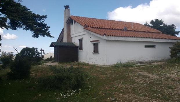 Το καταφύγιο Φλαμπούρι. Μια εξαιρετική πρόταση για εξόρμηση εντός Αθηνών!