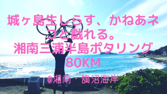 城ヶ島生しらす、かねあネコと戯れる。三浦半島ポタリング80km