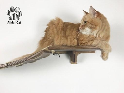 Ponte passerella per gatti in legno