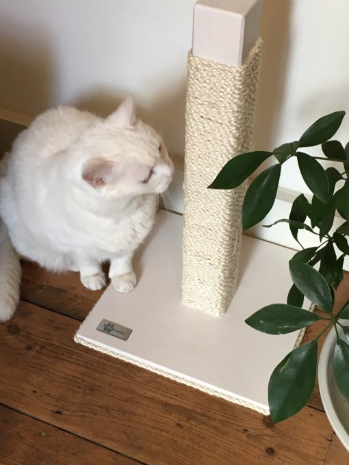 Tiragraffi per gatti legno