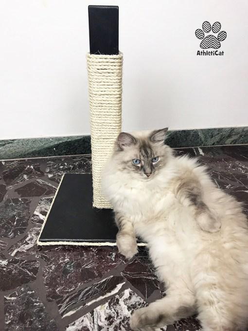 Tiragraffi in legno per gatti