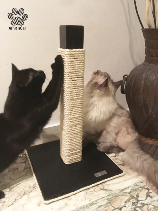 Tiragraffi per gatti in legno artigianale nero