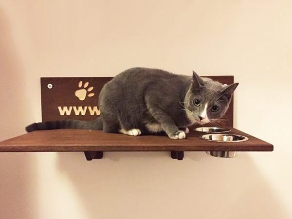 Mensola per gatto con ciotole