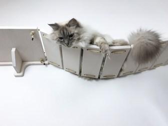 Ponte per gatti bianco