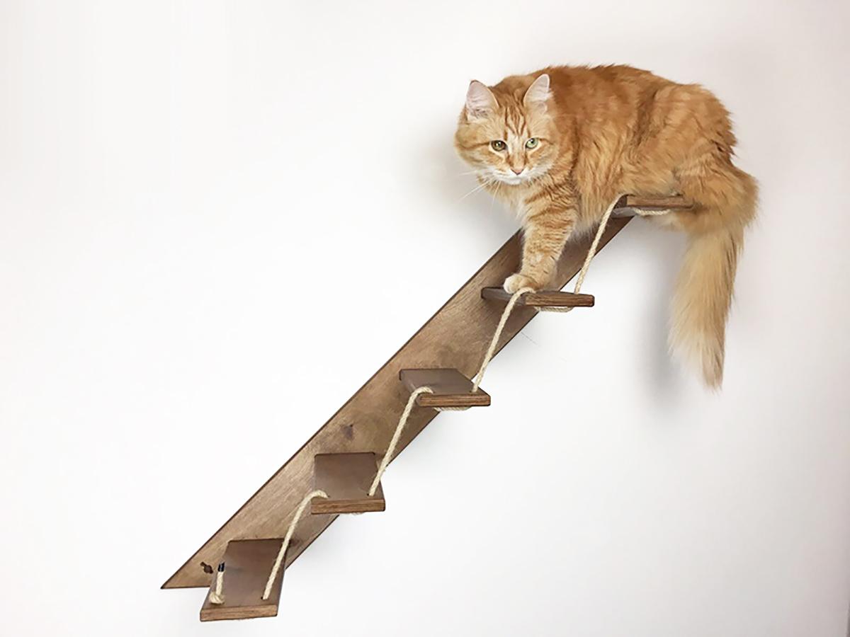 Mobili Per Gatti Fai Da Te : Arredamento e mobili per gatti e per la tua casa athleticat