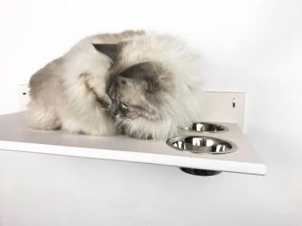 Mensola per gatti con ciotole bianca