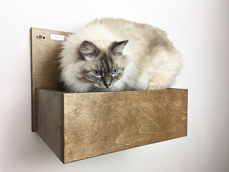 Cuccia da muro per gatti per percorsi a parete for Parete attrezzata gatti