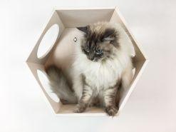Esagono cuccia per gatti bianco