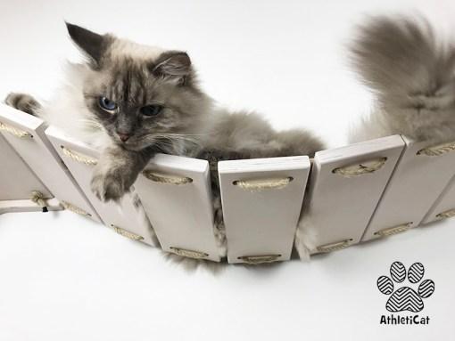 Cat bridge made of wood