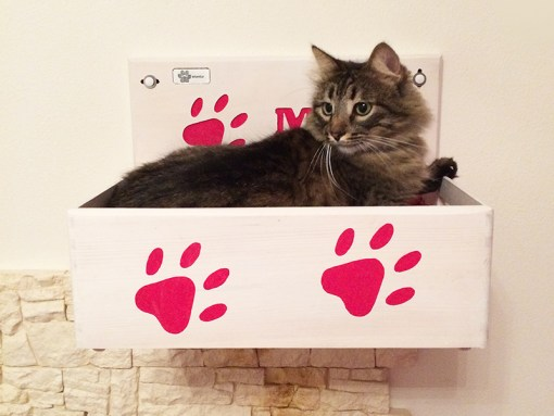 Wall mounted cat box
